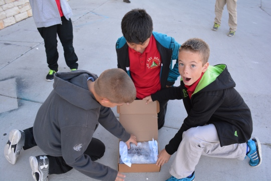 Sixth grade scholars Mateo Gomez, Jace Arellin, and Evan Spell's design passed both the vibration and the impact test.